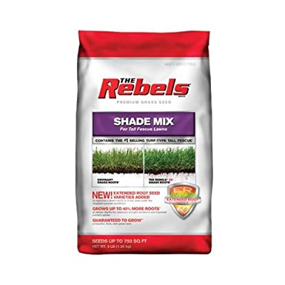 Pennington Seed 100526878 The Rebels Grass Seed, Tall Fescue Shade Mix, 3-Lbs.