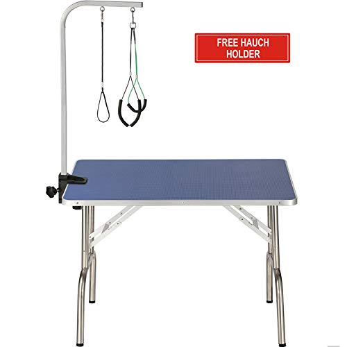 ITORI 32 Professional Grooming Table for Dogs and Pets which is Foldable and Durable with Adjustable Arm, Stainless Leg Frame and Extra Hauch Holders