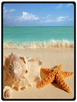 High Quality Summer Beach Scenery Seashells Starfish Fleece Travel Blanket with Standard Size 58