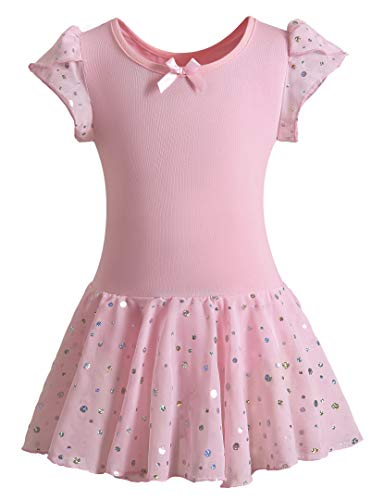 DANSHOW Girls Glitter Leotards for Ballet Dance Dress with Tutu Skirt Petal Sleeve(4-6years,Pink)