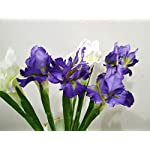 UM2-12-pcs-Artificial-Iris-Silk-Flower-for-Wedding-Party-Home-Decor-Purple-12-pcs