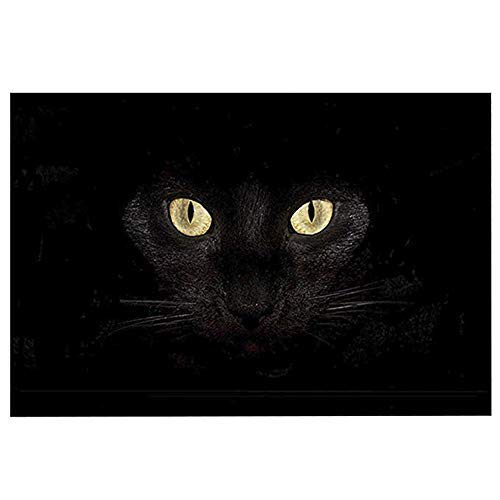 ChezMax Non-Slip Doormat Coral Fleece Indoor Outdoor Kitchen Floor Rug Front Door Mat Funny Flannel Carpet Black Cat 23.62