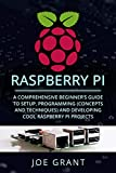 Raspberry Pi: A Comprehensive Beginner's Guide to