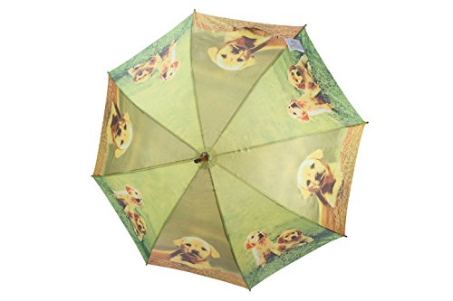 po-campo-rain-street-dogs-and-friends-umbrella-blue