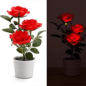 Fastest Shipping from USA, Solar Rose Flower Lights, LED Artificial Rose Pot Flower Bonsai LED Lamp Home Garden Decoration (Red) 2