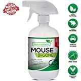 Mouse-B-Gone I Natural Rodent Repellent Spray I Mice Rat Squirrel & Rodent Deterrent I Vehicle Protection- Car RV Boat I Indoor & Outdoor I Peppermint Oil Non-Toxic Safe For Kid & Pet-Trap Alternative