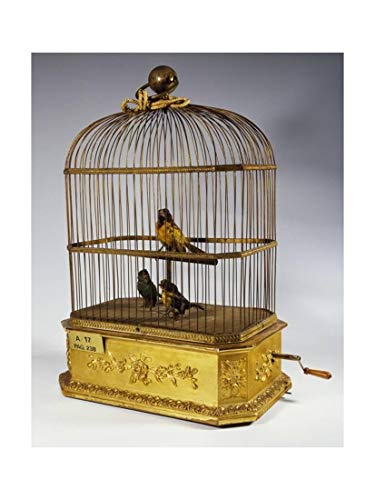 ArtEdge Music Box with Singing Birds in Cage, Giclee Print, 30 x 40 in