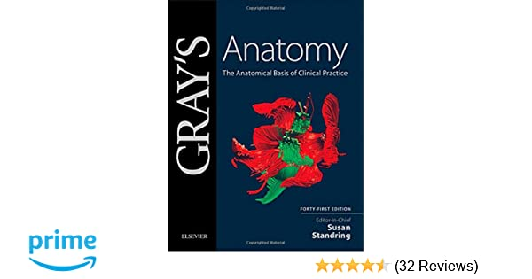 Gray\'s Anatomy: The Anatomical Basis of Clinical Practice ...