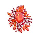 Timmy Woods Beverly Hills Collection Stoned red Firework Brooch