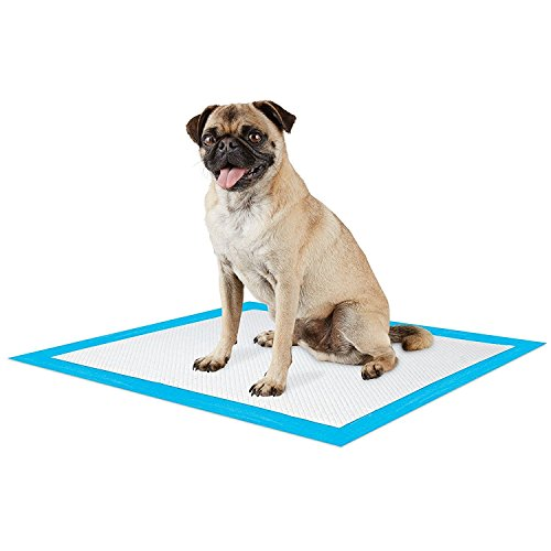 200 Count Maximum Absorbent Potty Puppy Training Pads, Thick & Padded, 34 gram, Fast (Maximum Absorbency Puppy Pads)