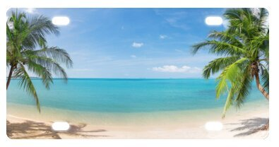 Amazoncom Tropical Paradise Ocean Beach Scene With Palm Trees