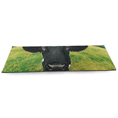 (CCRIM Prairie Cow Print Crystal Velvet Yoga Mats Extra Long 71 Inch Luxury Eco Friendly Fitness Mat for All Types of Yoga, Pilates & Floor Exercises)
