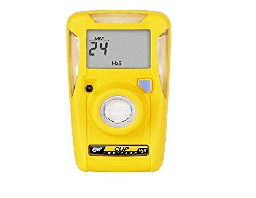 BW Technologies BW Clip BWC2-H Single Gas H2S Monitor