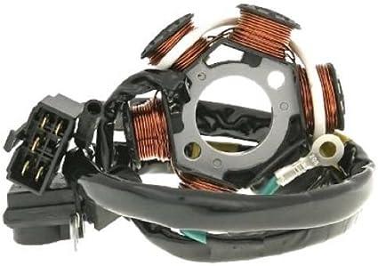 luz eléctrica encendido estátor Kymco Fever KB DJ Fever Zx 50, Honda Vision: Amazon.es: Coche y moto