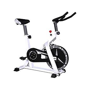 41BBbvK2q0L. SS300 Zavddy-SP Spin Bike Spinning Bike Home Mute Cyclette Indoor Sports Bike Cyclette Famiglia Aerobica Allenamento Bici Esercizio di Bicicletta (Colore : Bianca, Dimensione : 104x58x114cm)