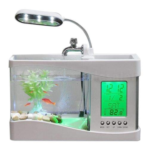 Home Aquarium Small Fish Tank USB LCD Desktop Lamp Light LED Clock White   Light Green, M