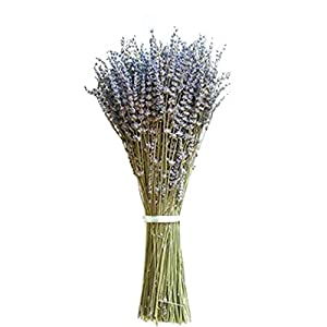 WDDH 80PCS Natural Dry Lavender Bundle Dried Flower Purple Lavender Bouquet Home Wedding Decoration Bouquet Shooting Props 77