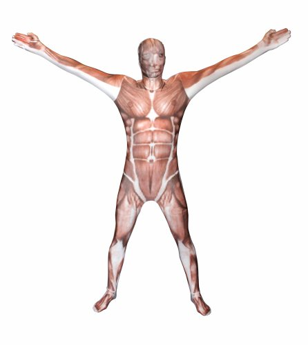 Muscle Kids Morphsuit Costume - size Medium 3'6-3'11 (Most Popular Kids Costumes)