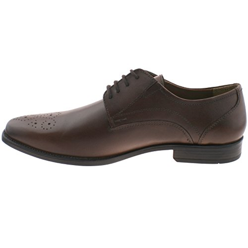 Shoes Birkdale Smart Leather Office 7 Mens 41 uk Lace Up Foam eu Memory Brown Lotus vwzFT