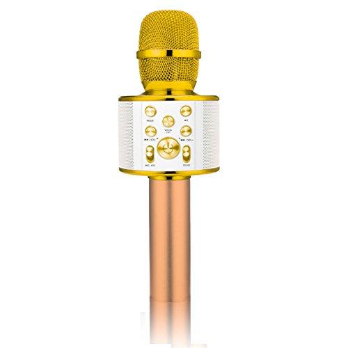 istar Wireless Karaoke Microphone