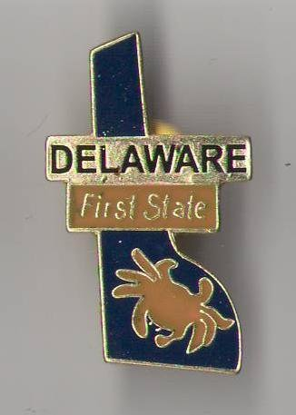 Pin Hat Shaped (State Shaped Pin, Hat, Tie, Lapel, Etc. All States Available (Delaware))