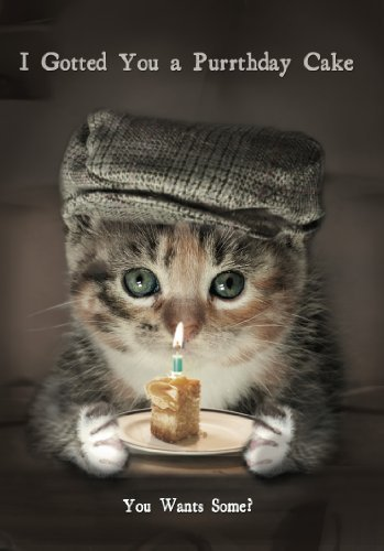Funny Cat I Gotted You A Purrthday Cake