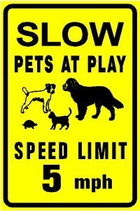 SLOW PETS AT PLAY dog cat turtle animal sign