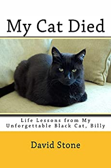 My Cat Died: Life Lessons from My Unforgettable Black Cat, Billy by [Stone, David]