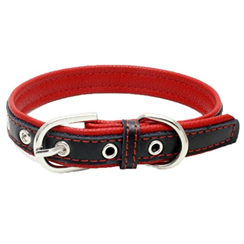 Lifestyler Exquisite Adjustable Buckle Dog Puppy Pet Collars (XS, Red)
