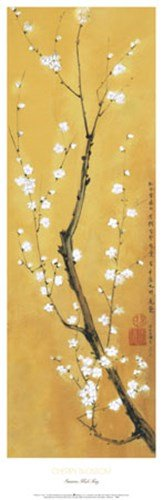 Cherry Blossom by Suzanna Mah Fong – 11.75 X 36インチ – アートプリントポスター LE_851529 B01N697WCP Unframed Print Unframed Print