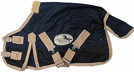 4 feet Cwell Equine Mini Lightweight Turnout Shetland Rug Pony Rug Foal Rug No Fill Purple