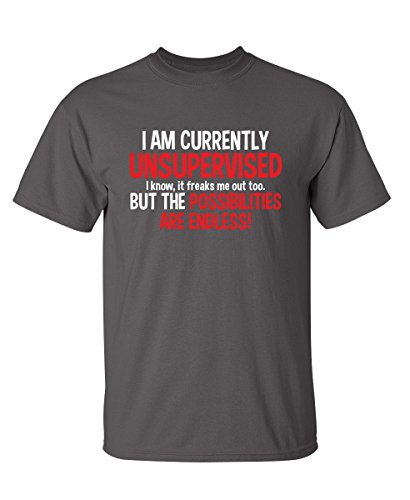 I Am Currently Unsupervised Adult Humor Novelty Graphic Sarcasm Funny T Shirt L Dark Grey