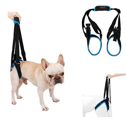 RC GearPro Dog Lift Harness for Back Legs, Pet Support Sling Help Weak Legs Stand Up Injured Disabled Arthritis ACL Joint Pain Elderly (S, Blue)