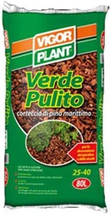 vigorplant verde limpio corteza Pino Marítimo Para Jardín escurridora Border Border Jardín – Pack de 80 lt: Amazon.es: Jardín