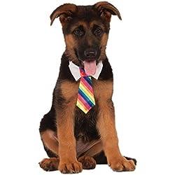 Rubie's Costume Company - Corbata de arcoíris para Mascota, Multicolor, Large/X Large
