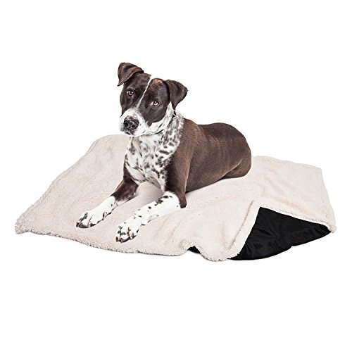 Puppy Blanket,Super Soft Sherpa Dog Blankets and Throws Cat Fleece Sleeping Mat for Pet Small Animals 45x30 Black by Pawsse (Image #3)