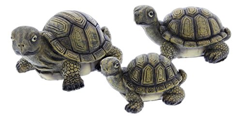 Mayrich Set of 3 Assorted Resin Turtle Figurines