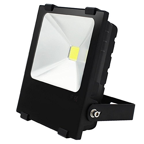 Dl Daylight Fluorescent (10W Outdoor LED Flood Light - AC85-265V Waterproof Daylight COB LED Floodlight Security Light for Landscape, Building, Sports, Advertising Board, Work, Accent, General Area Lighting)