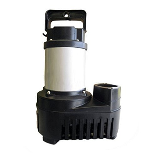 Big Frog Eco-Drive 5500 GPH Stainless Steel Solids Handling Submersible Pond and Waterfall Pump