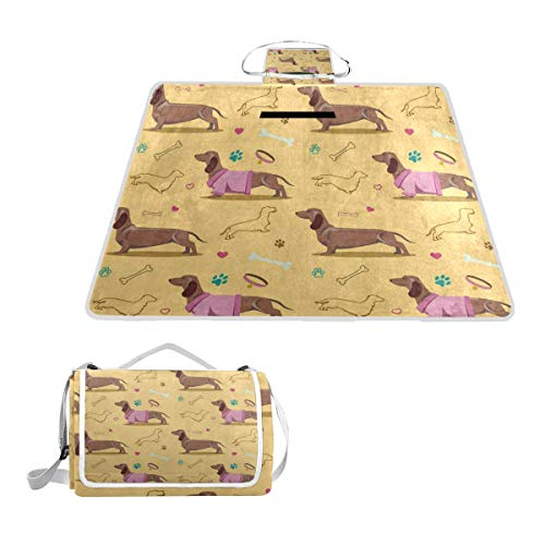 FunnyCustom Picnic Blanket Colorful Dachshund Dog Paw Print Heart Bone Outdoor Blanket Portable Moisture Proof Picnic Mat for Beach Camping