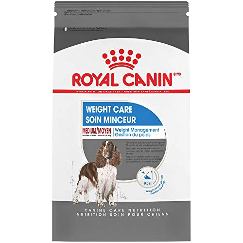 Royal Canin Size Health Nutrition Medium Weight Care Dry Dog Food, 6-Pound
