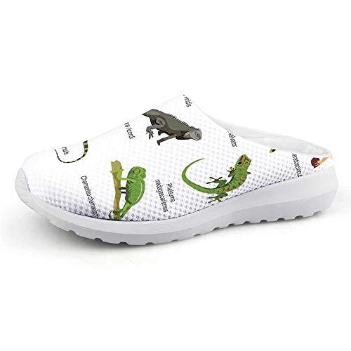 C COABALLA Reptiles Beautiful Summer Mesh Sandals,Lizard Family Design Primitive Reptiles Camouflage Exotic Creatures Home Design Decorative for Walking,US Size 8