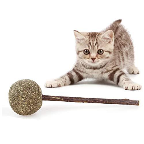Fanxieast Cat Mint Ball Stick Rod Catnip Candy Toy, Cat Dental Chews Catnip 100% Natural Cat Teeth Cleaning Catnip Cat Entertainment Toys Healthy Teeth Oral Care (Catnip Lollipop)