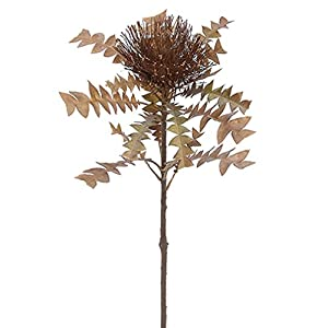 "SilksAreForever 26"" Artificial Dried-Look Cushion Protea Flower Spray -Brown (Pack of 12) 93"