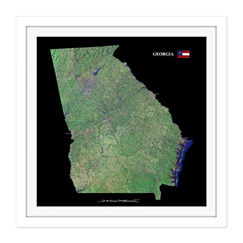 Map County Satellite USA State Flag Georgia Replica Square Wooden Framed Wall Art Print Picture 16X16 Inch