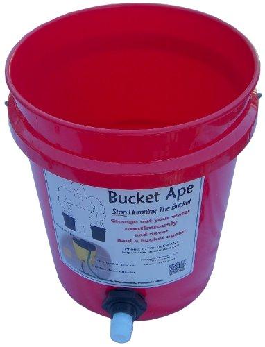 5 Gallon Bucket Garden - 9