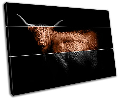 Highland Cow Animal Wildlife Abstract Canvas Print Home Decor- Wall Art - Modern Prints - Ready To Hang