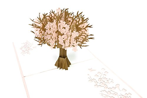 PopLife Cherry Blossom Tree 3D Pop Up Greeting Card for All Occasions - Flowering, Blooming, Spring - Fold Flat Mailing - Easter Sunday, Birthday, Mother's Day, Graduation, Anniversary, (Seasonal Cut Flowers)
