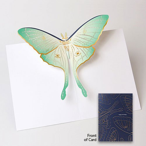 pure-alchemy-paper-engineered-birthday-card-luna-moth