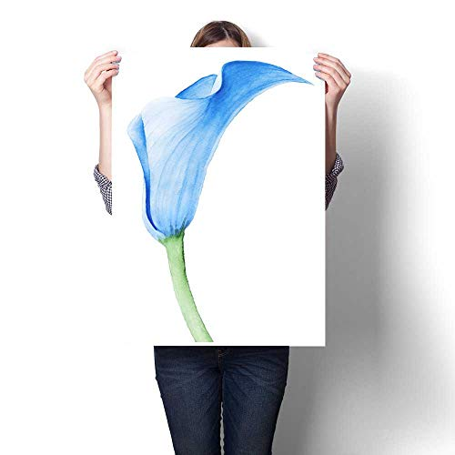 - Anshesix Wall Art Canvas Prints Calla Lily Watercolor Illustration Print Paintings for Home Wall Office Decor 24
